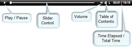 Video tutorial controls.png